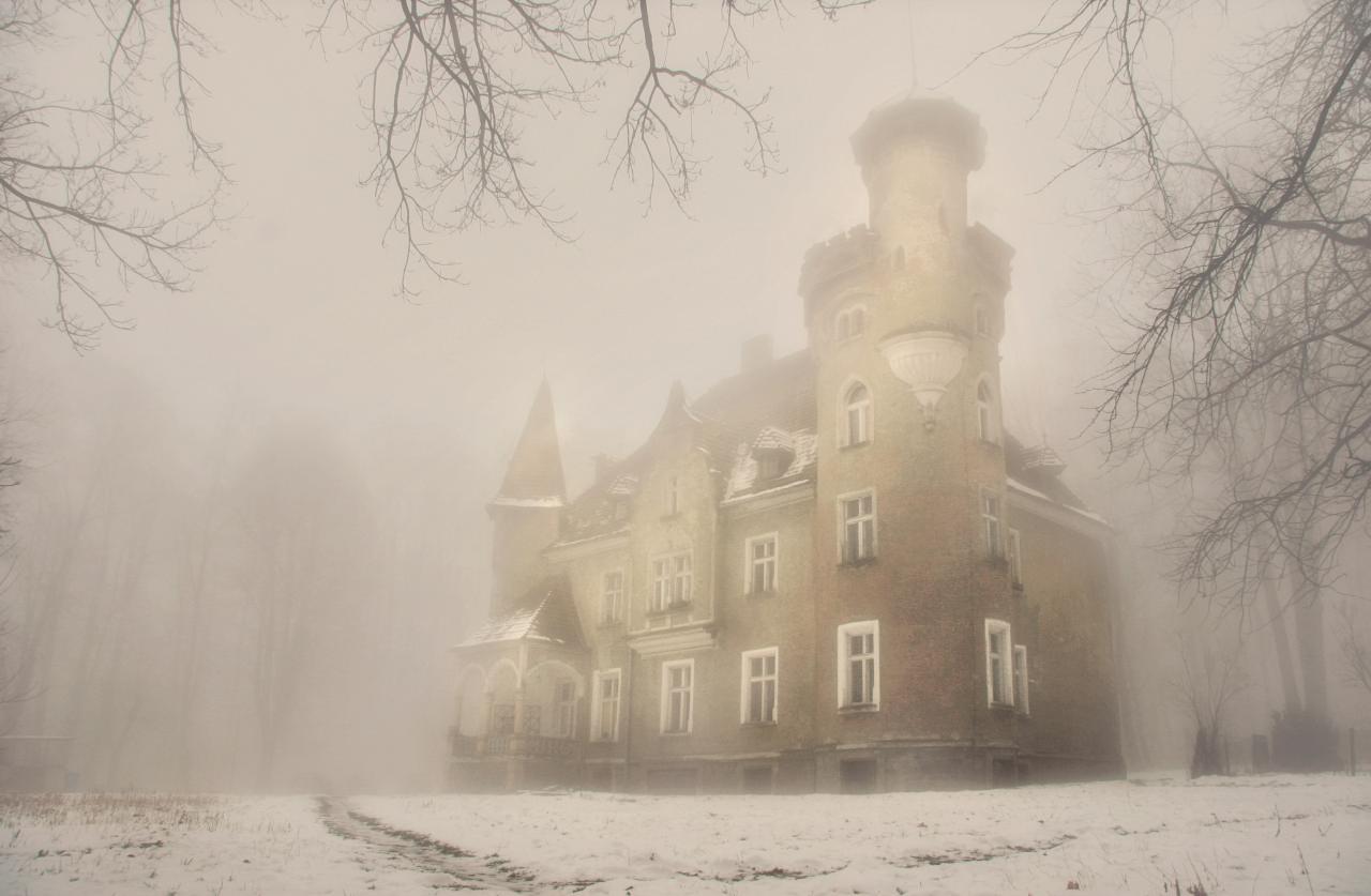 15 wyróżnienie Piotr_Szewczyk_Zima_Zamek w Lesie Bukowym.jpeg