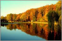Galeria złota jesień w Trzebnicy