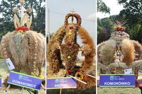 W tym roku przyznano trzy pierwsze miejsca za najpiękniejszy wieniec dożynkowy - zwyciężyły wieńce z Domanowic, Brzezia i Komorówka.